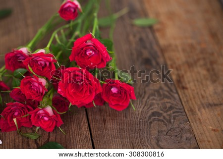 wooden table with rosebush studio shot - stock photo