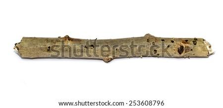 wooden twigs on white - stock photo