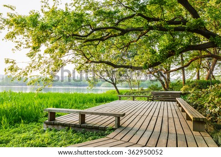 wooden walkway and green natural scenery in the summer