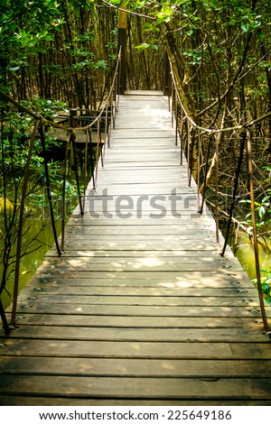wooden Walkway in Mangrove forest of thailand - stock photo