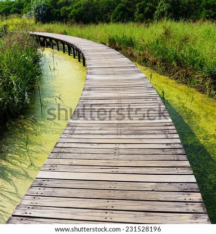 Wooden walkway in park - stock photo