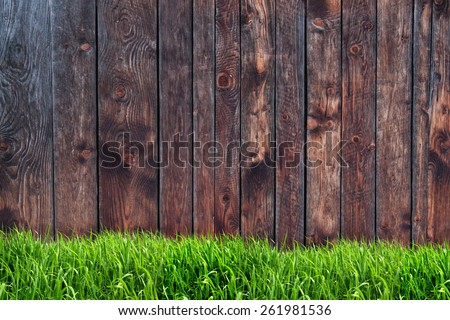 Wooden wall and green grass - stock photo