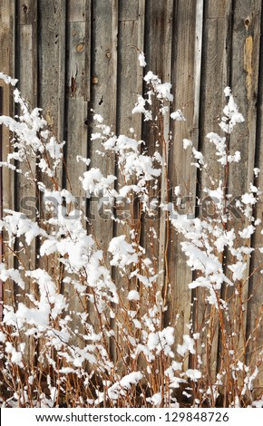 wooden wall and snow - stock photo