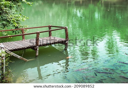 wooden waterside