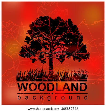 Woodland eco banner. Red and black tones. Silhouette of tree and grass. Outlines of maple leaf and spider web. Can be used as poster, badge, wallpaper, backdrop, background, icon, sign.