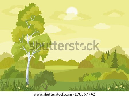 Woodland landscape with birch, fir trees and flowers. - stock photo