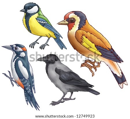 Woodpecker, titmouse, goldfinch and a raven on a white background - stock photo
