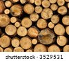 woodpile (round) - stock photo