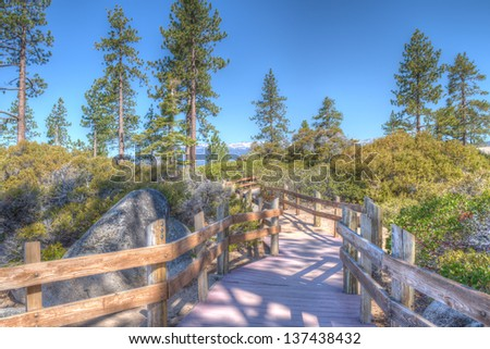 Woods trail on the shore of the lake Tahoe - stock photo
