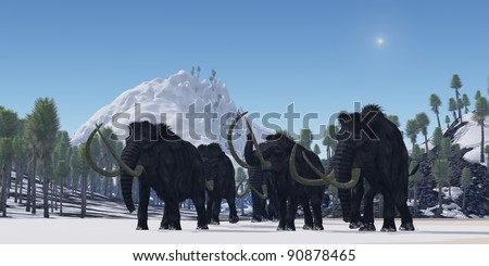 Woolly Mammoth - A herd of Woolly Mammoths migrate to a warmer climate in the Pleistocene Age. - stock photo
