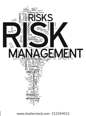 Word Cloud with Risk Management related tags - stock photo