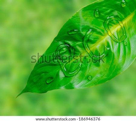 Word eco is written on green leaf by water drops, concept of save of environment - stock photo