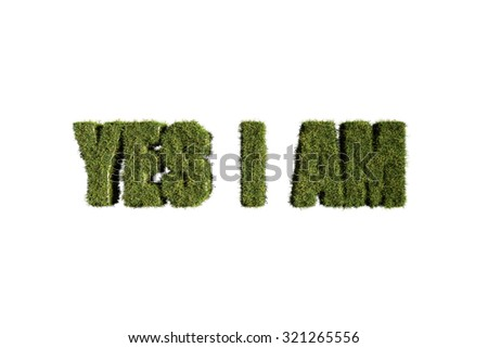 word made with grass isolated on white background - stock photo