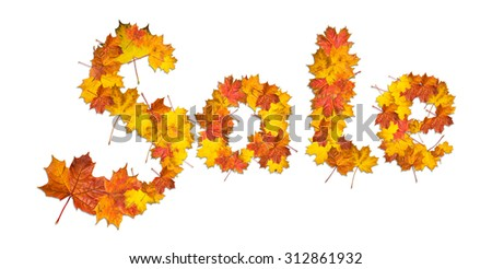 Word Sale made of bright maple leaves on white background for signboard or advertisement. - stock photo
