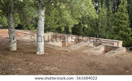 Words engraved on the trees in Generalife Gardens the Alhambra, Granada, Spain - stock photo