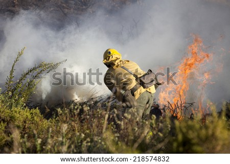 Work extinguishing forest fires - stock photo