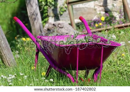 work in a garden wheelbarrow ready for use - stock photo