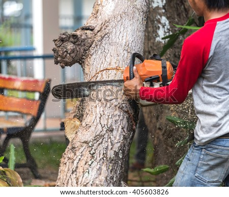 worker cutting tree with electrical chainsaw. - stock photo
