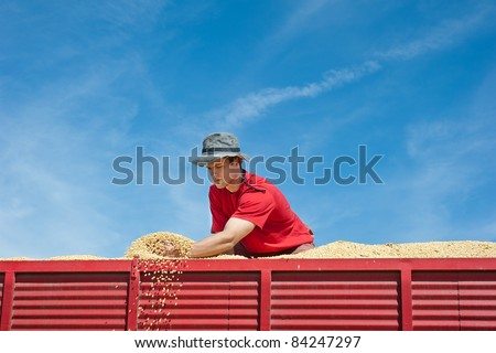 Worker holding soy beans after harvest at tractor trailer - stock photo