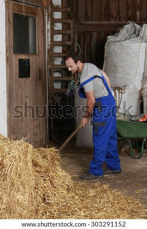 worker on a farm in a barn