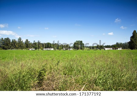 Workers' homes on the farmlands among the crops - stock photo