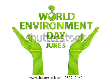 World environment day concept made from green leaves. - stock photo