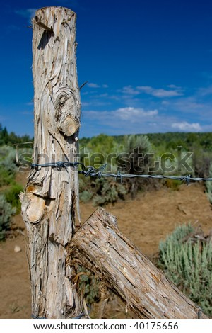 Worn fencepost - stock photo