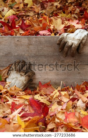Worn garden leather gloves with a wooden box surrounded by autumn leaves. - stock photo