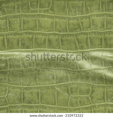 worn scratched and crumpled green snake skin texture closeup - stock photo