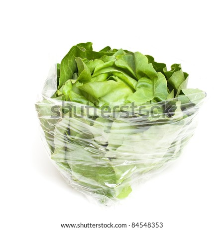 wrapped lettuce on white background