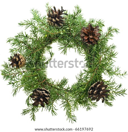 wreath from natural juniper and cones  isolated on white - stock photo