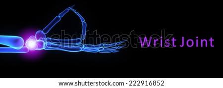 Wrist joint - stock photo