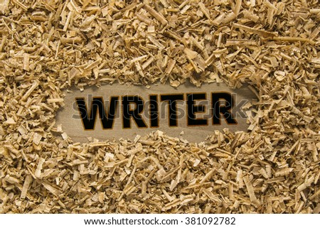 WRITER word on wood - stock photo