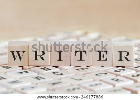 writer word on wood blocks - stock photo