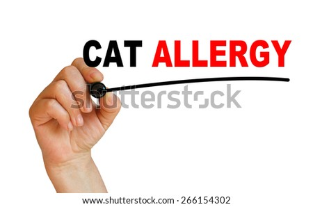 writing  words ' CAT  ALLERGY  '  on white  background made in 2d software - stock photo