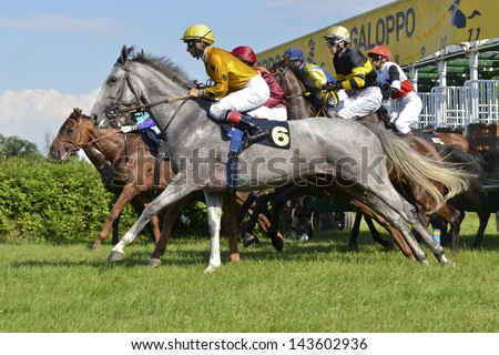 WROCLAW, POLAND - JUNE 23: Start in the international race for the prize of the President of Wrocl?aw in a Racecourse Partynice on June 23,2013 in Wroclaw, Poland. - stock photo