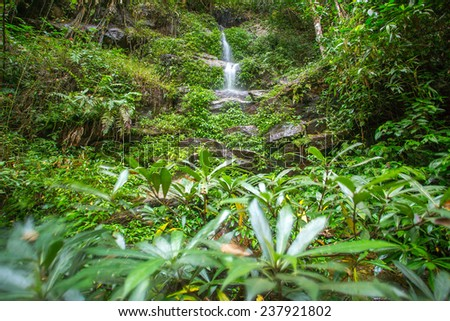 Wwaterfall in the tropical forest - stock photo