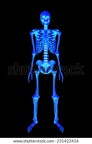 X-ray full body of human skeletons anatomy isolated on black background with clipping path - stock photo