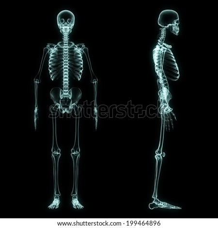 X-ray full body of skeleton in brightness blue with black background - stock photo