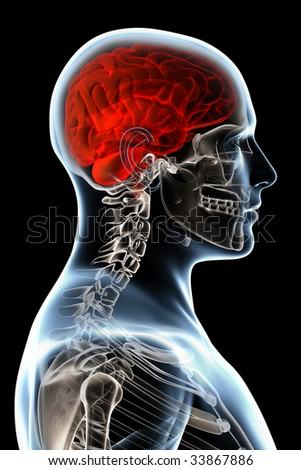 X-ray head anatomy over a black background - stock photo
