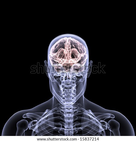 X-Ray of a male skeleton with his brain displayed. Isolated on a black background - stock photo