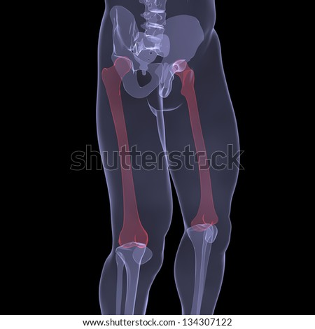 X-ray of human legs. Render on a black background - stock photo