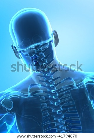 X-ray rear view of human spine - stock photo