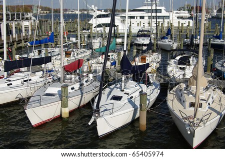 Yacht Basin: Competition sailboats at a Maryland marina await their next outing on the Chesapeake Bay. - stock photo