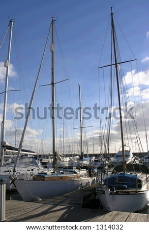 yachts in marina - stock photo