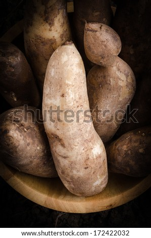 Yacon roots on a bowl with dark background - stock photo