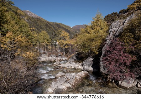 Yading, China - October 20, 2015: Beutiful nature of Colorful autumn in Yading national level reserve on October 20, 2015 in Yunnan, China.