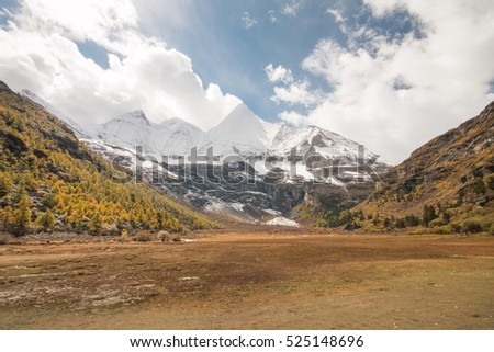 Yading National Park in colourful autumn with a beautiful snow mountain.  Daocheng, Sichuen, China.