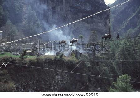 Yak caravan crossing suspension bridge - stock photo