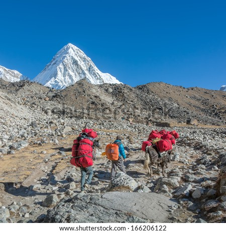 Yaks caravan on the trek at the foot of mount Everest (8848 m) near Gorsk Shep village - Nepal, Himalayas - stock photo